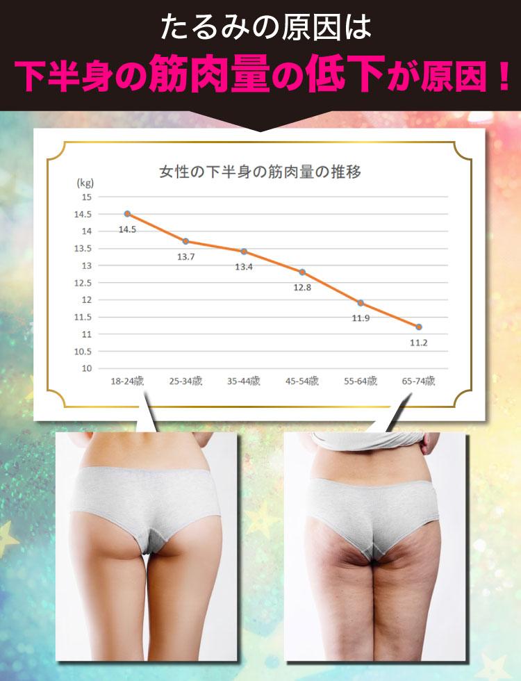 【メイクアカーヴ】たるみの原因は下半身の筋肉量の低下が原因!(女性の下半身の筋肉量の推移)【メイクアカーブ】